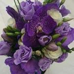 lisianthus fiore reciso