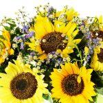 Beautiful-bouquet-of-sunflowers-Beb-Sanremo