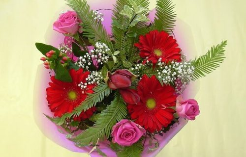 Bouquet of cut flowers - red and green